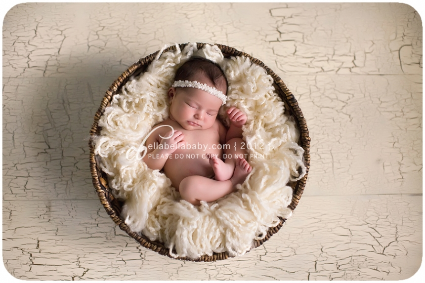 So tiny sweet austin newborn photographer